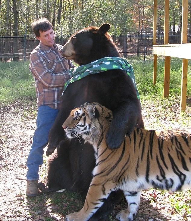 http://bigpicture.ru/wp-content/uploads/2012/11/unbelievablefriendship-6.jpg