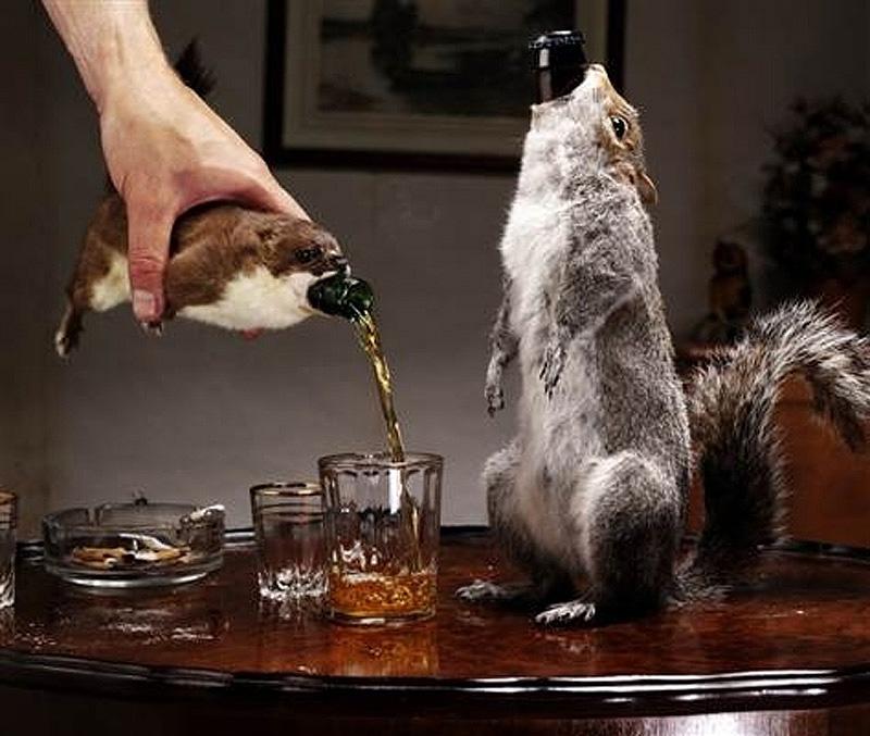 unusualdrinks 7 10 самых необычных алкогольных напитков в мире