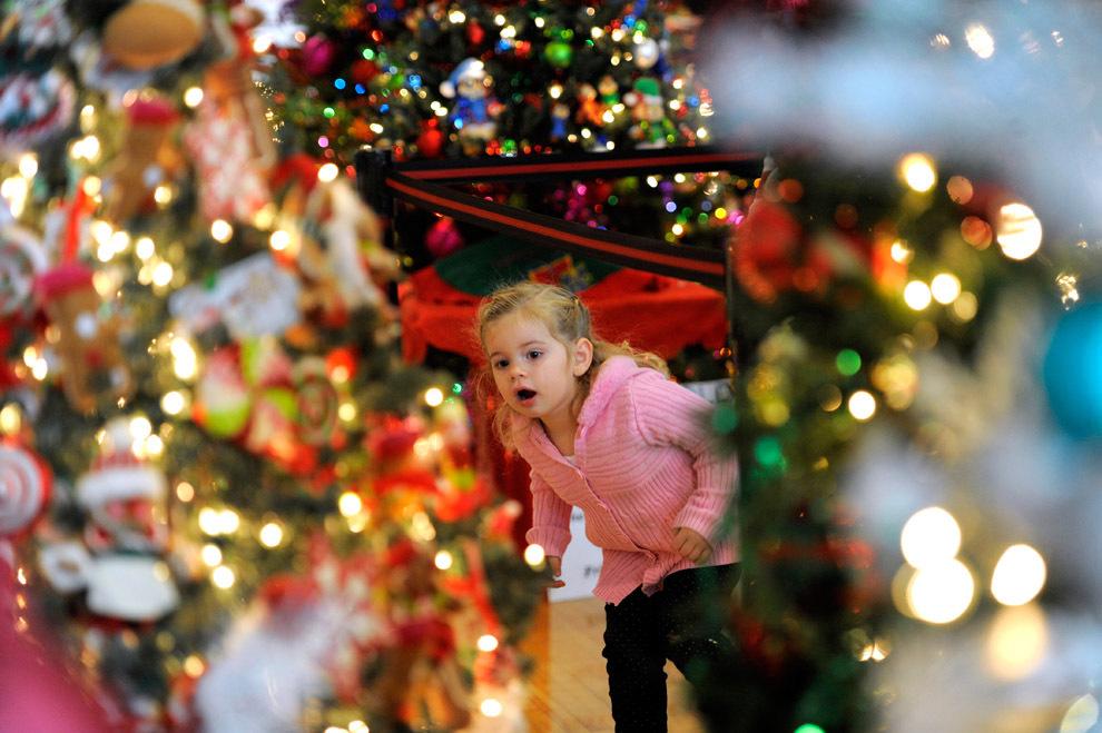 120 Предрождественские хлопоты в фотографиях
