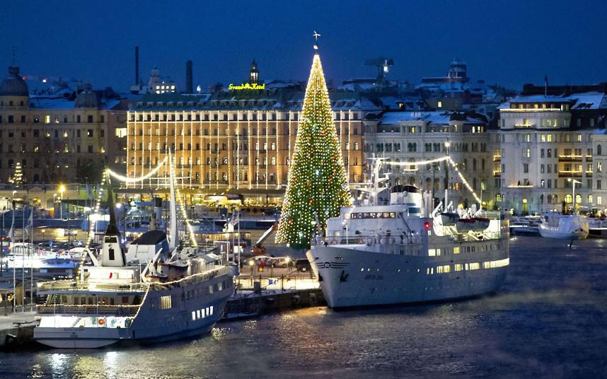 Christmas trees and lights 4 Ёлки и праздничные огни по всему миру