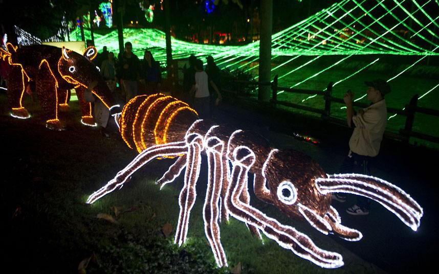 Christmas trees and lights 9 Ёлки и праздничные огни по всему миру