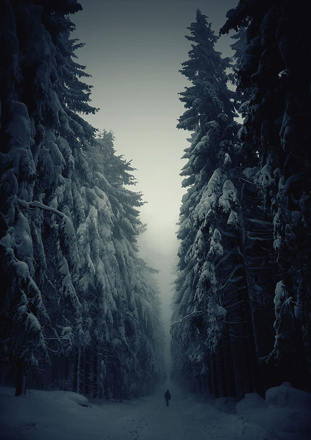 Зимові снігові пейзажі 20 фото