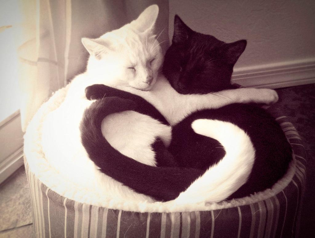 Heart 22 Ко дню Святого Валентина: Сердца, всюду сердца!