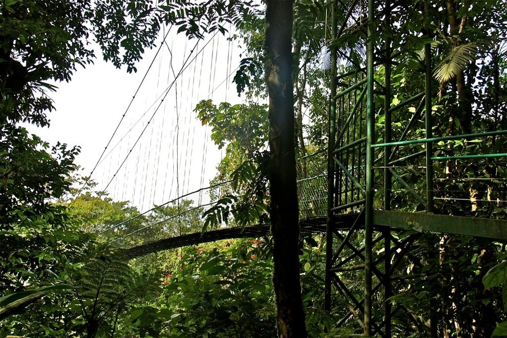 http://bigpicture.ru/wp-content/uploads/2012/12/Insane-Hanging-Bridges-19.jpg