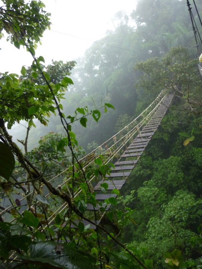 http://bigpicture.ru/wp-content/uploads/2012/12/Insane-Hanging-Bridges-22.jpg