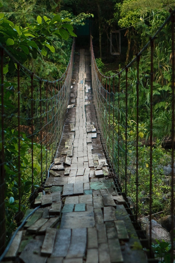 http://bigpicture.ru/wp-content/uploads/2012/12/Insane-Hanging-Bridges-7.jpg