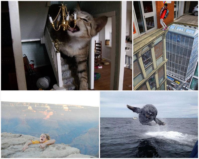 Лучшие любительские фото 2012 года