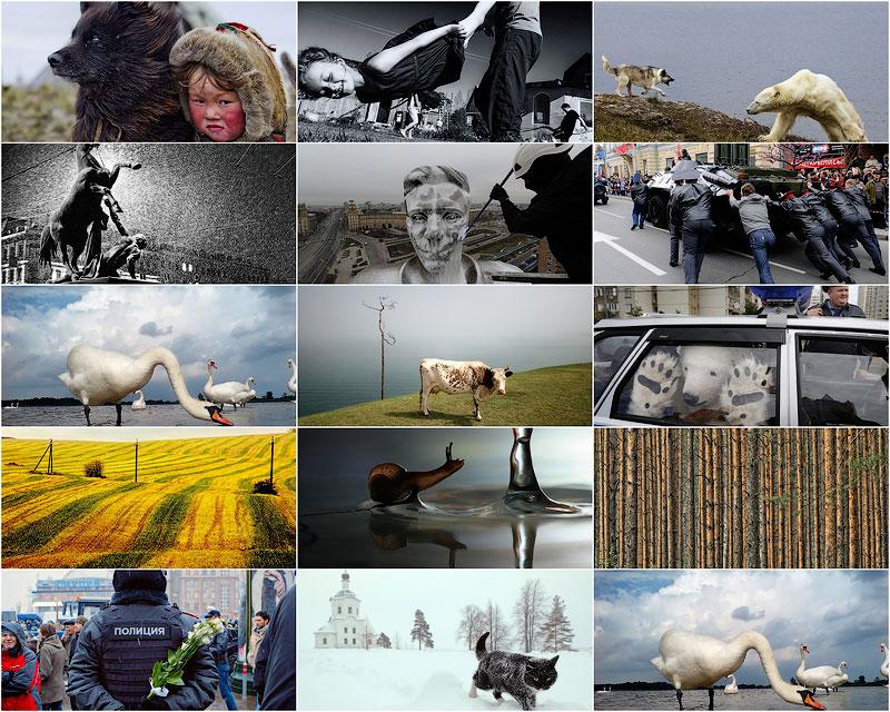 Best of Russia 2012: год из жизни России в самых ярких и неординарных фотографиях