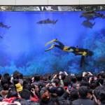 В китайском торговом центре лопнул гигантский аквариум