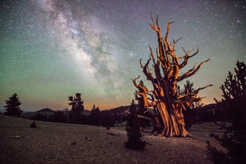 «Астрономический фотограф года»: Лучшие работы конкурса