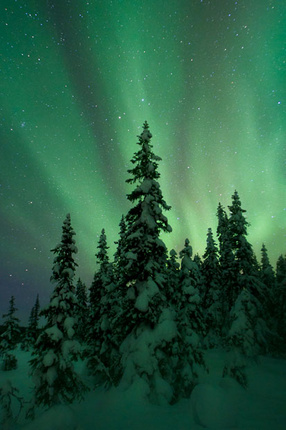 aurora10 Северное сияние в Швеции и Норвегии
