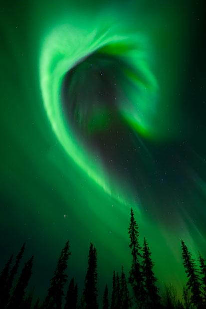 aurora16 Северное сияние в Швеции и Норвегии