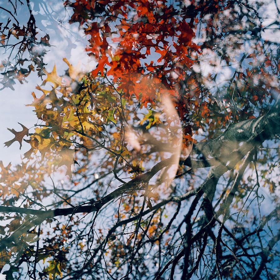 avtoportretixanni 19 Мрачные и необычные автопортреты Твиг Капры из Нью Йорка