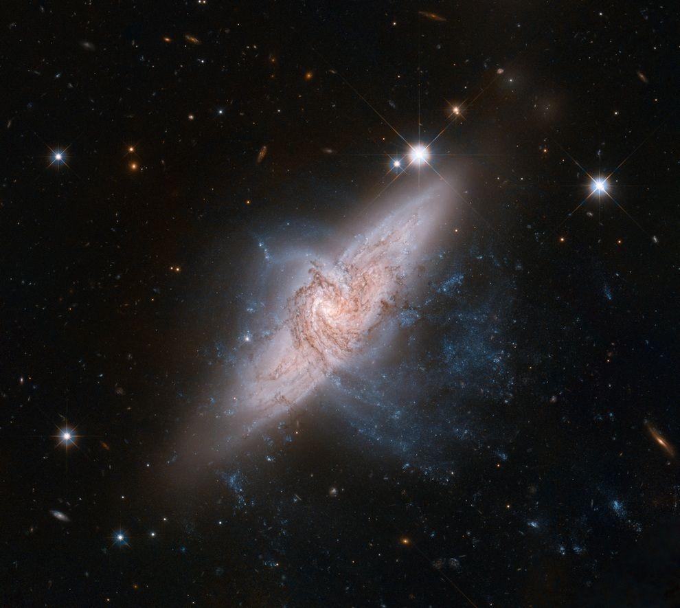 fromspace11 Космос 2012: Избранные события и фотографии