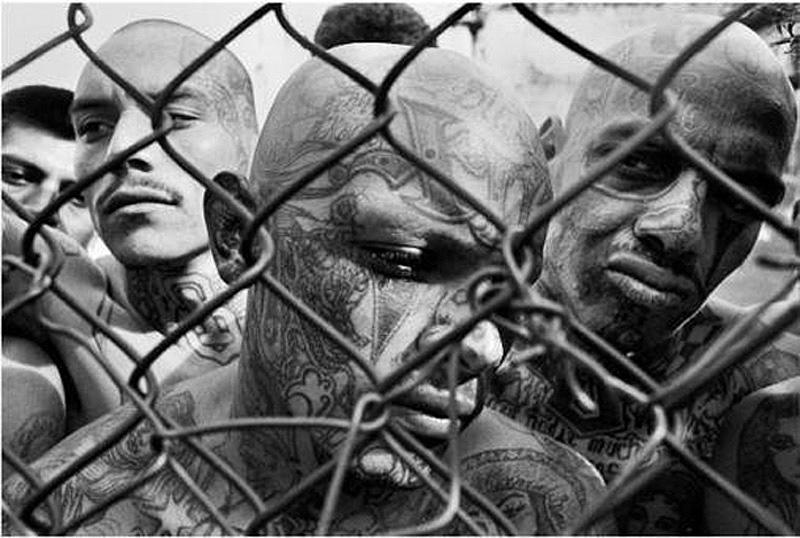 jestokiebandiprestupnogomira 21 Самые жестокие банды преступного мира