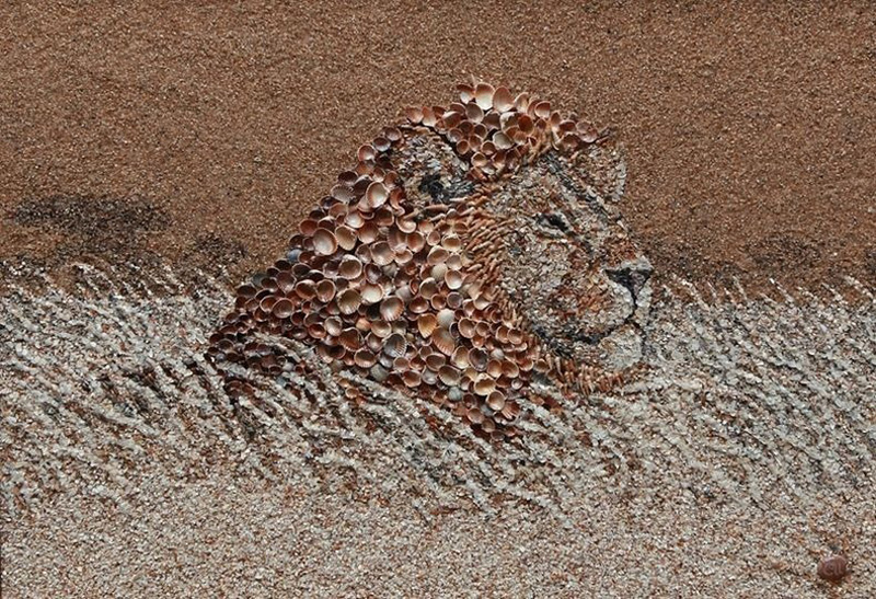 mozaikaizpeska 2 Мозаика из песка и ракушек от Светланы Иванченко