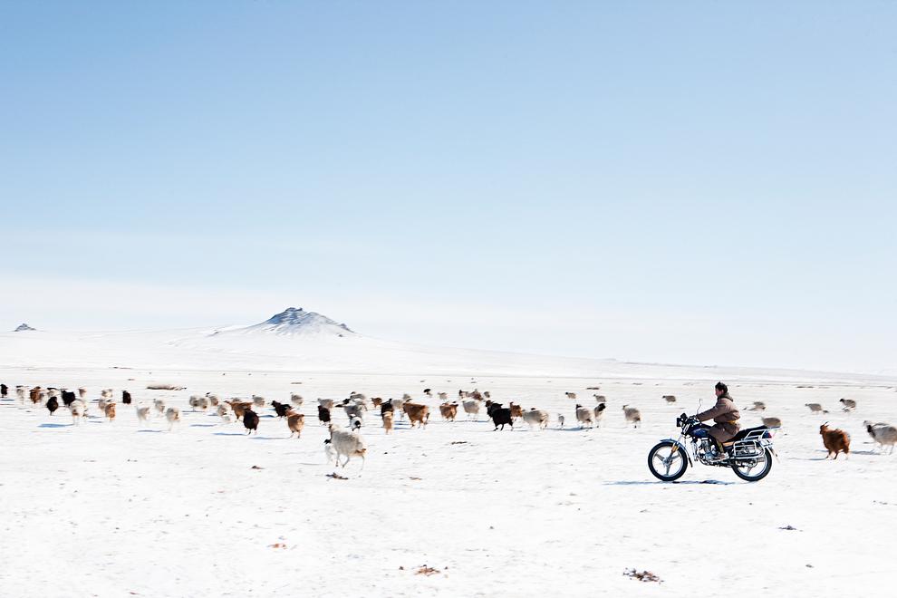 nomade01 Vanishing Cultures Project: Монгольские кочевники
