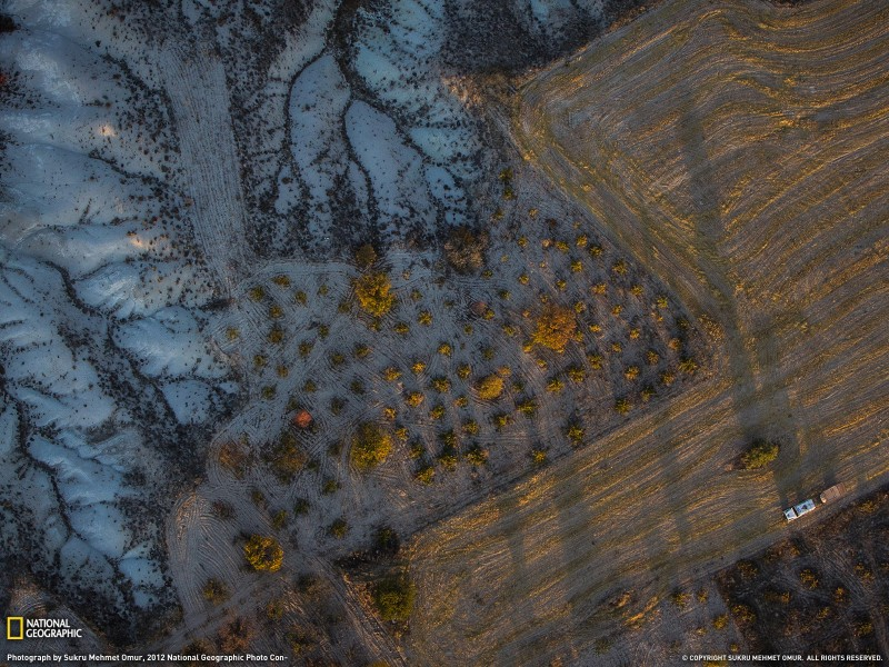 oboinationalgeographics 23 800x600 Обои для рабочего стола от National Geographic за ноябрь 2012