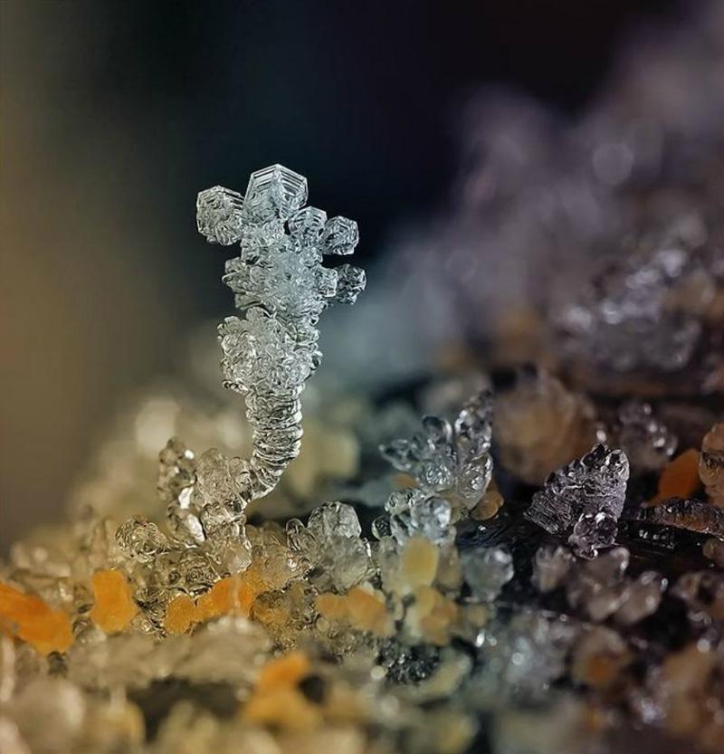 snejinkimakro 15 Снежинки. Фотограф Андрей Осокин