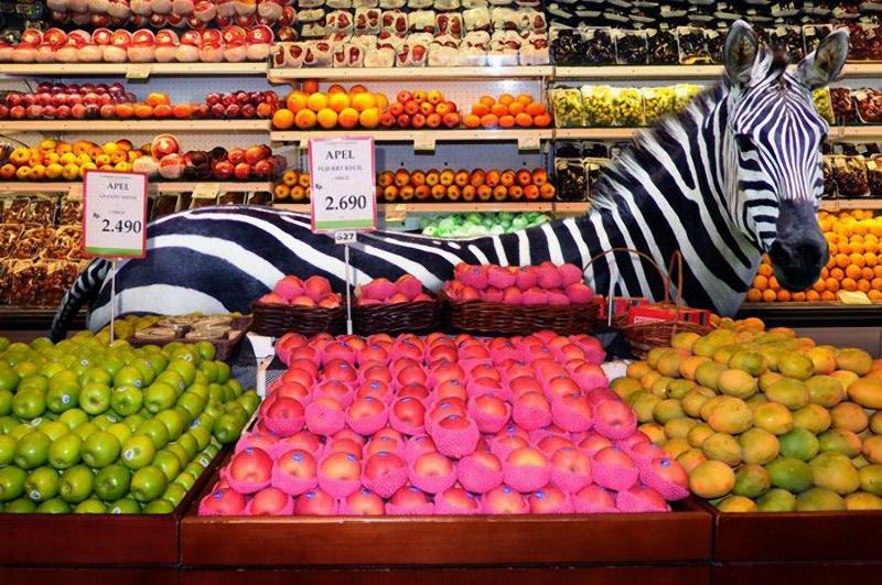 CuriousAnimals03 Животные в супермаркете
