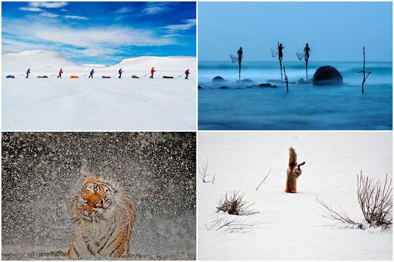 TEMP25 Победители фотоконкурса от National Geographic 2012