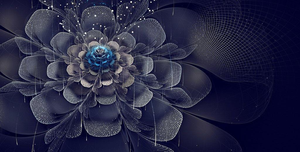 fractal8 Чудеса фрактальной графики