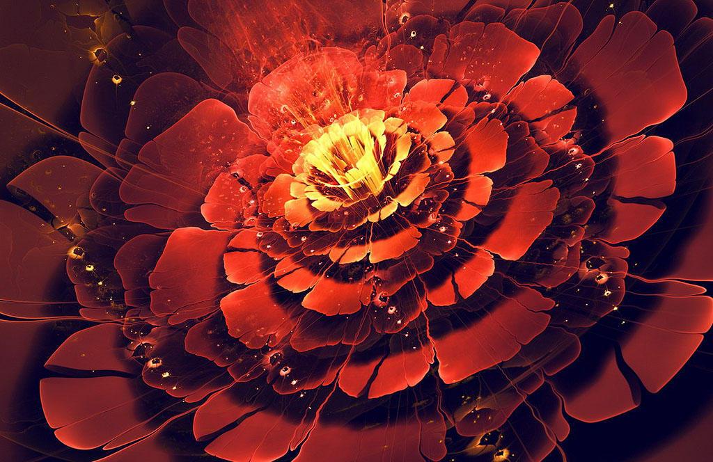 fractalB Чудеса фрактальной графики
