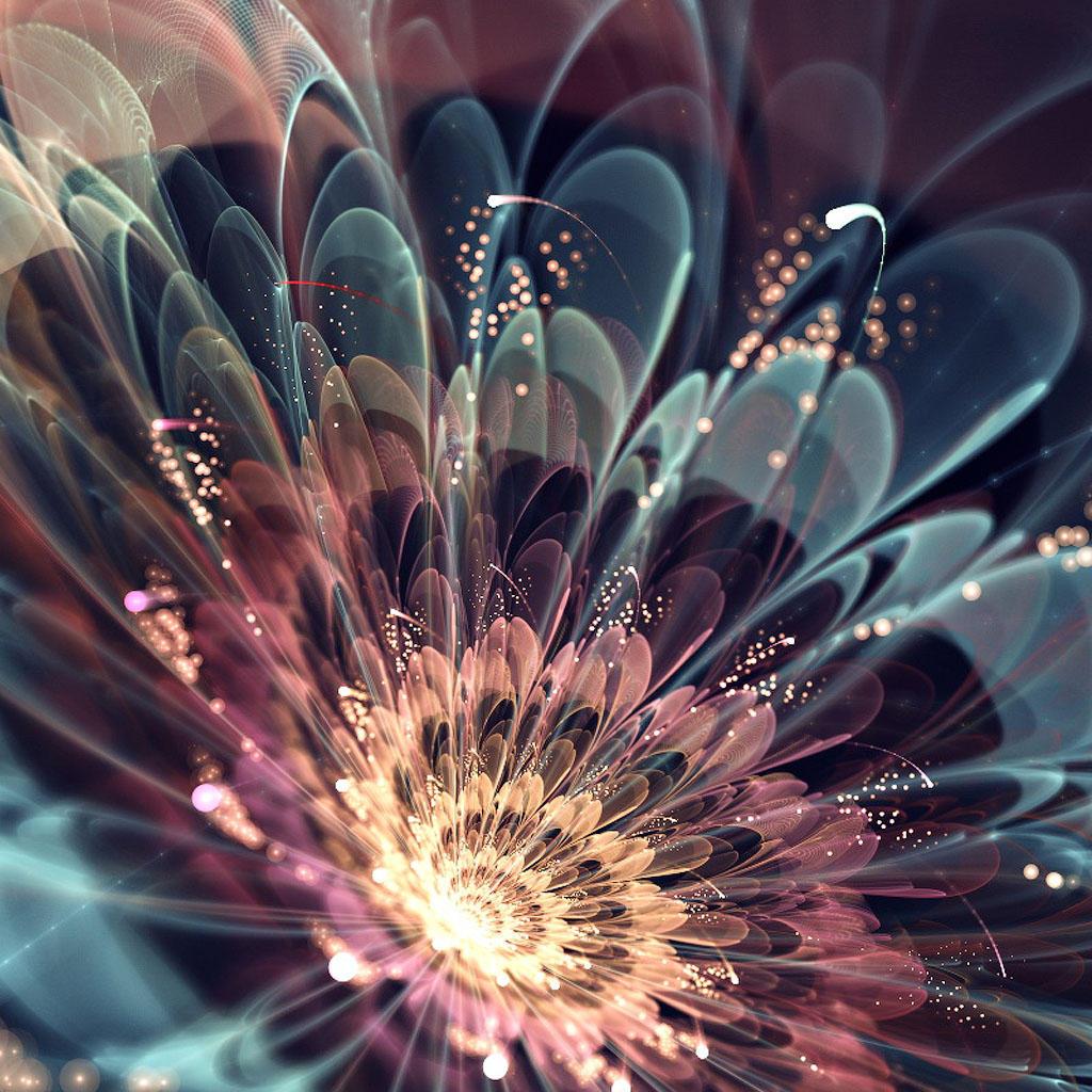 fractalO Чудеса фрактальной графики