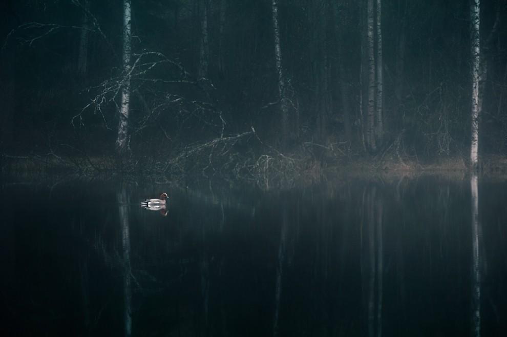 mikko130 990x657 Атмосферный фотограф Микко Лагерстедт