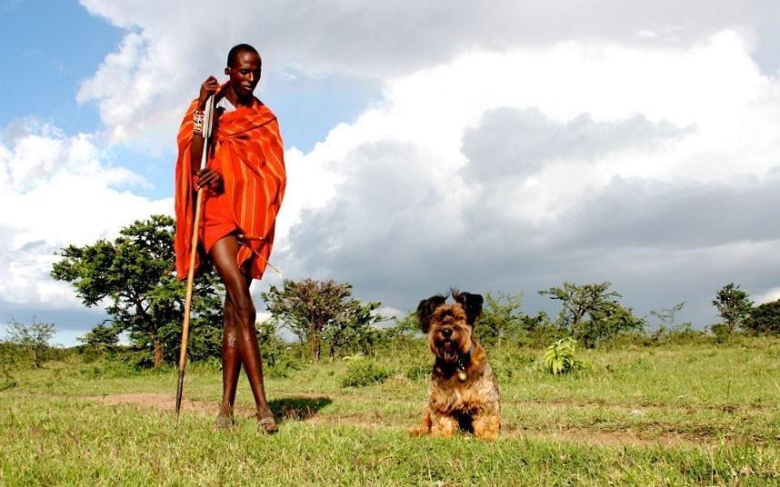 oscarthedog02 Оскар пес путешественник