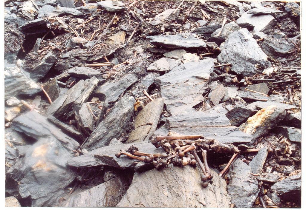 skeletons06 Озеро скелетов Роопкунд в Индии