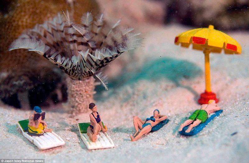 Веселые креативные сцены в подводных миниатюрах