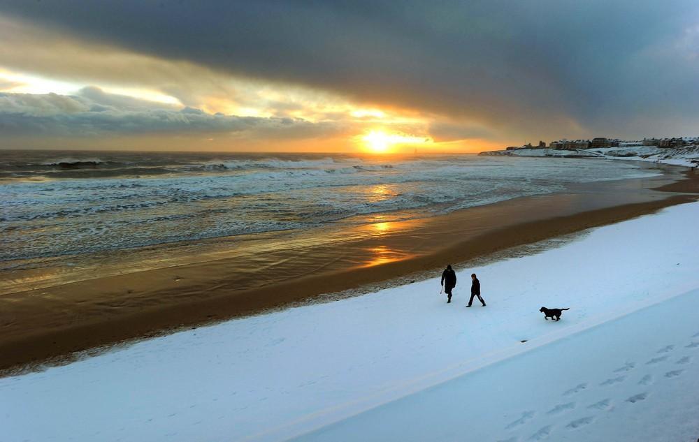 Чарующая Красота Зимы