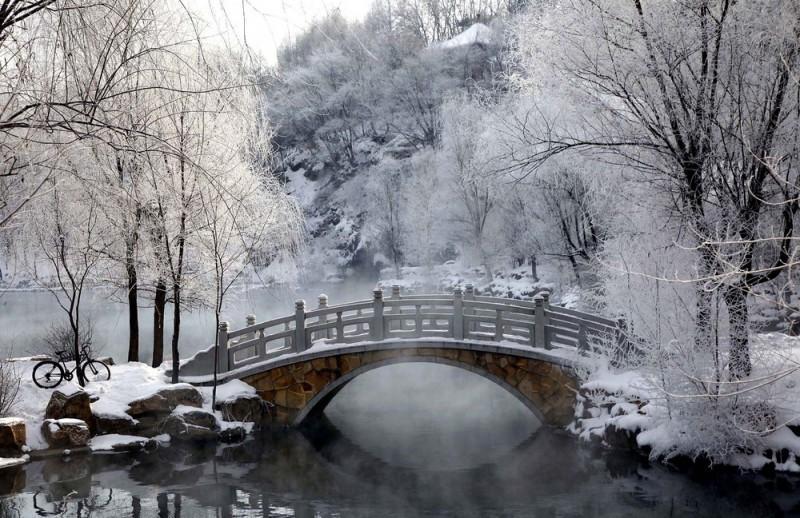 winterbeauty49 800x518 Красота зимы