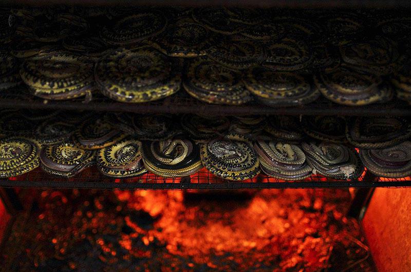 Как изготавливаются сумки из змеиной кожи