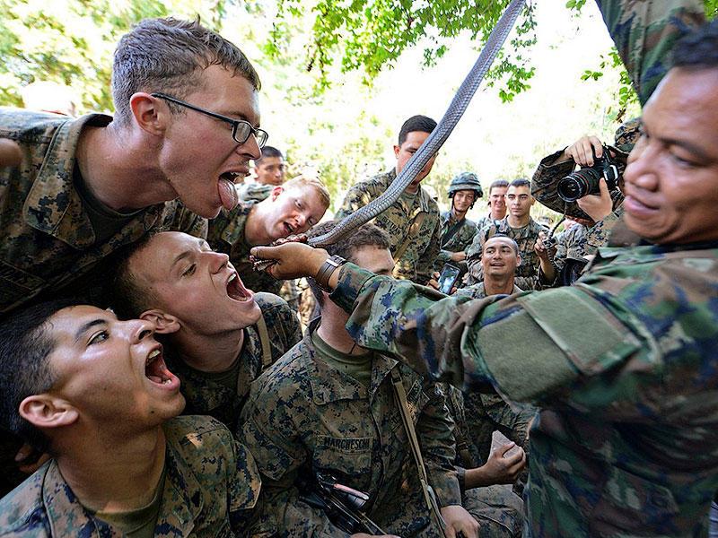 Военные учения Cobra Gold2013