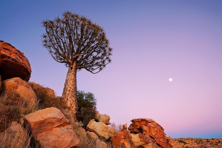 Namibia13 Фантастические пейзажи Намибии