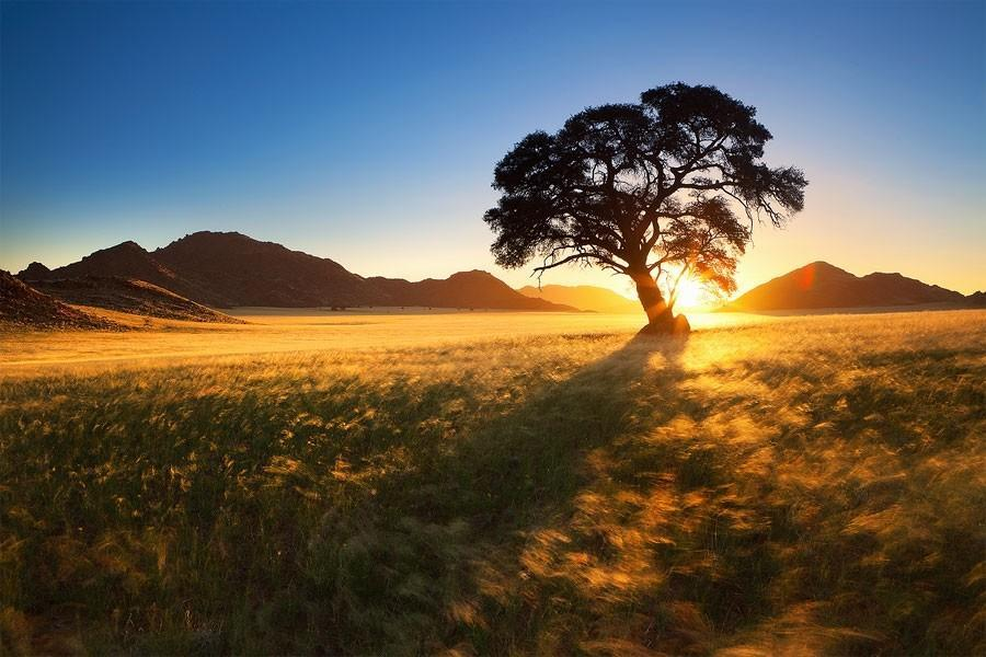 Namibia16 Фантастические пейзажи Намибии