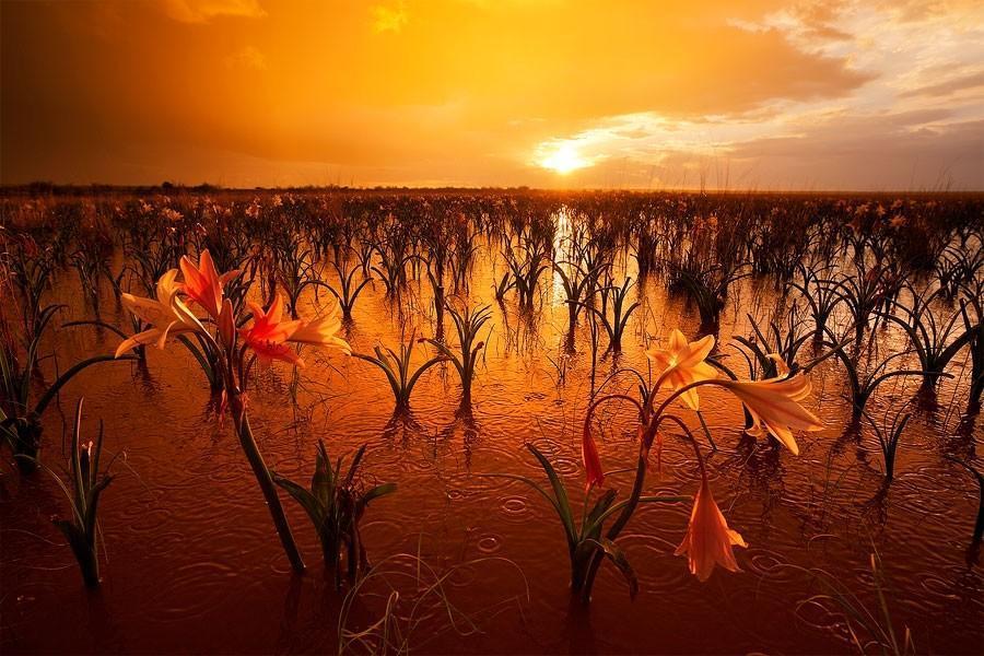 Namibia18 Фантастические пейзажи Намибии