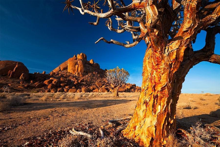 Namibia19 Фантастические пейзажи Намибии