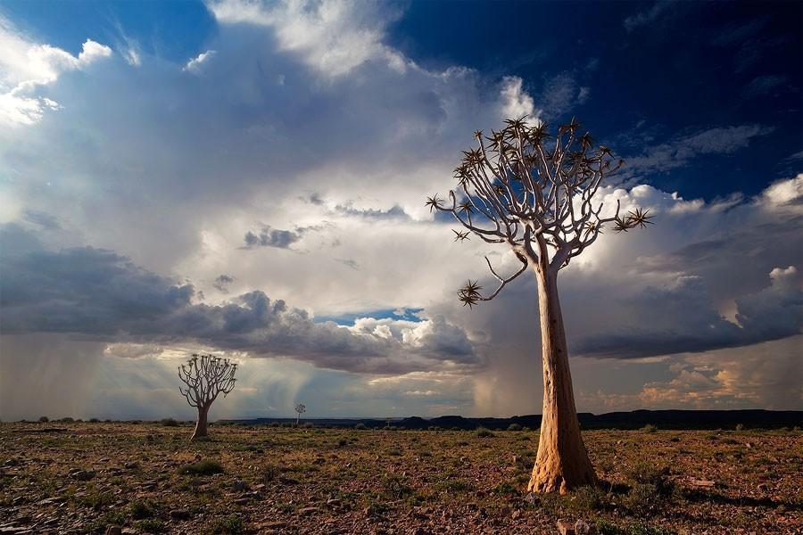 Namibia20 Фантастические пейзажи Намибии
