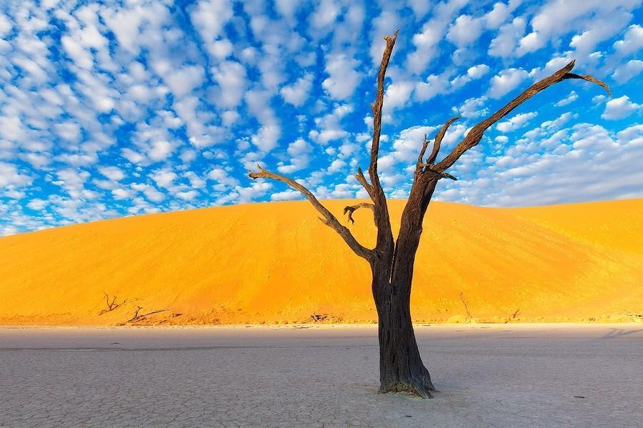Namibia25 Фантастические пейзажи Намибии