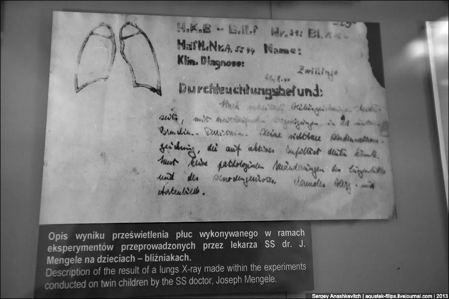auschwitz31 Аушвиц. Фабрика смерти