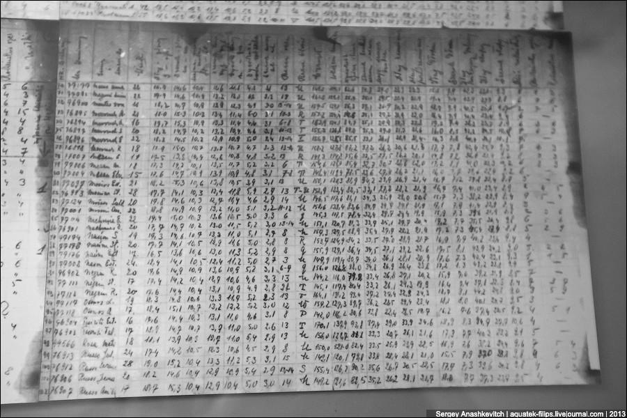 auschwitz33 Аушвиц. Фабрика смерти
