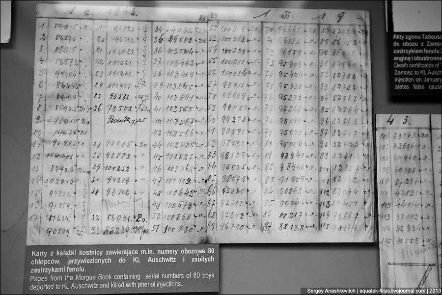 auschwitz34 Аушвиц. Фабрика смерти