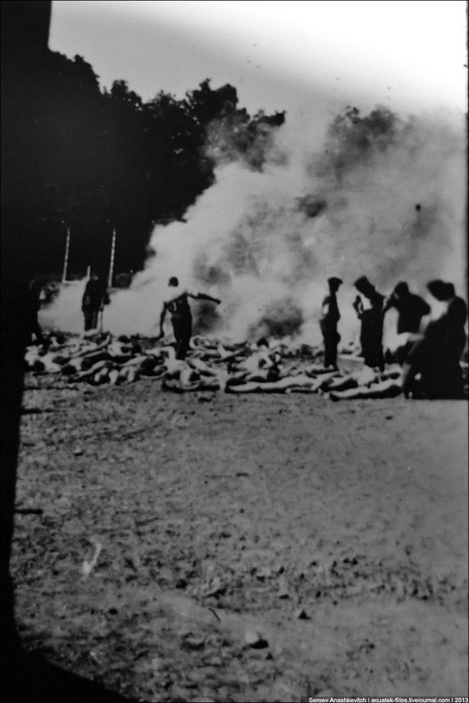 auschwitz44 Аушвиц. Фабрика смерти