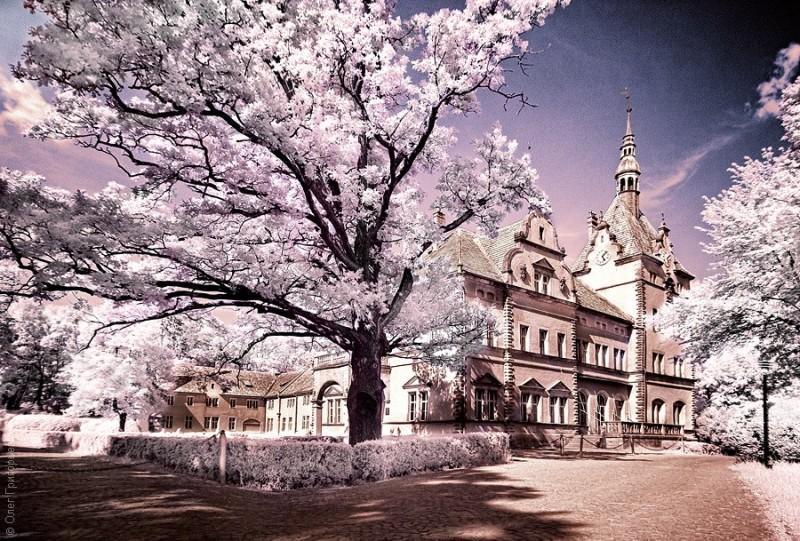 infrared06 800x541 Инфракрасная фотография от Олега Григорьева