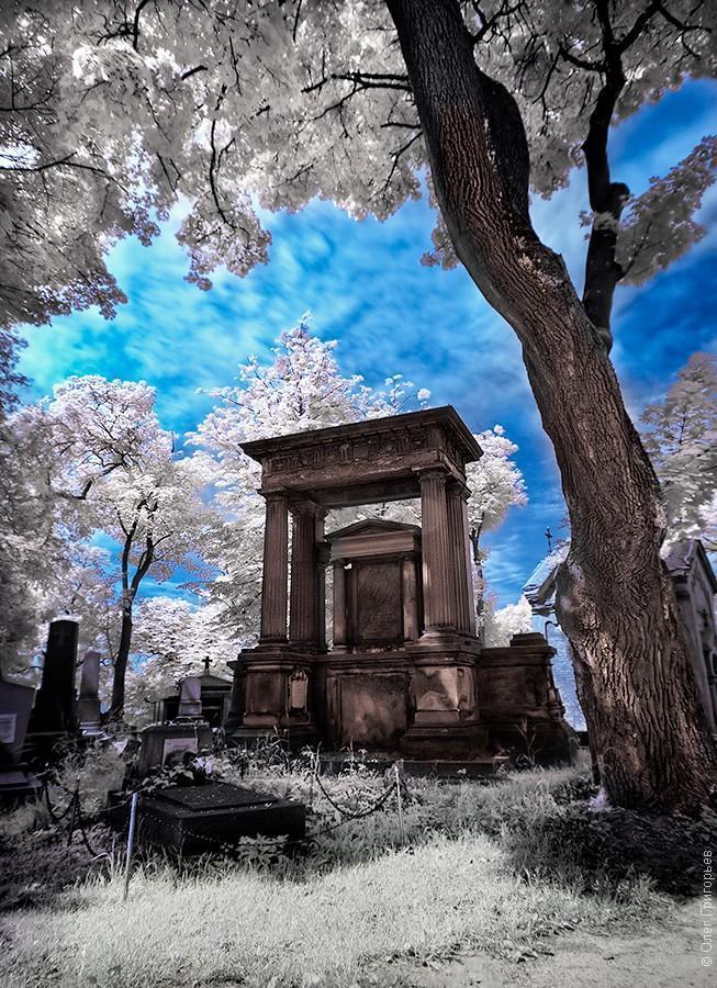 infrared15 Инфракрасная фотография от Олега Григорьева