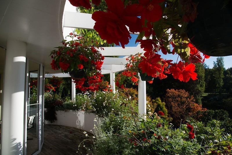 mapleglen16 Восхитительный сад Maple Glen в Новой Зеландии