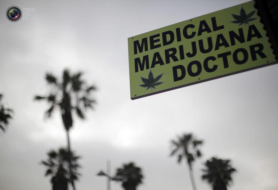 marijuana04 Марихуана в США